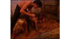 Romantic threesome porn scenes with - More at 69avs com Thumb